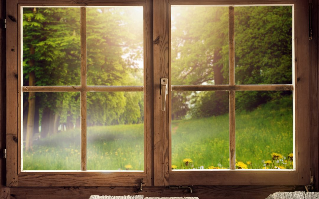 Preparing Your Windows for Spring