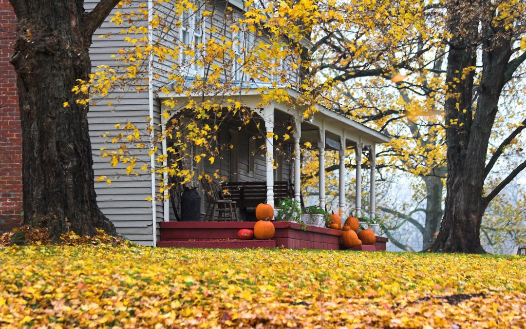 window repair and other Autumn home fixes